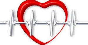 Bloeddoorstoming, hart, energie en circulatie