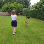Mensen en hun angst voor honden